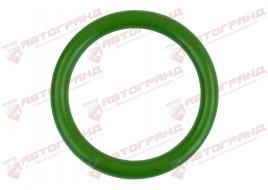 Кольцо уплотнительное форсунки DAF (21x27x3) 1301890