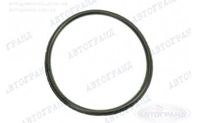 Кольцо уплотнительное бензонасоса ГАЗ 3110, 3302, 2217 Чайковский