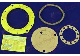 Ремкомплект УАЗ 3160, 3163 поворотного кулака (сальник, войлок, пружина, прокладка) Липецк